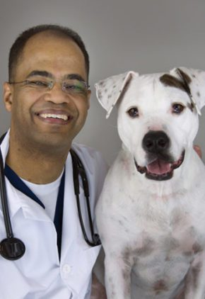 Dr. Erick is board certified in veterinary internal medicine. He is sitting next to a large white dog.