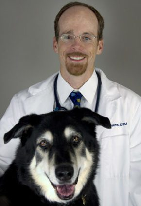 Dr. Michael Reems is a board certified veterinary surgeon. He is sitting with a long-haired dog.