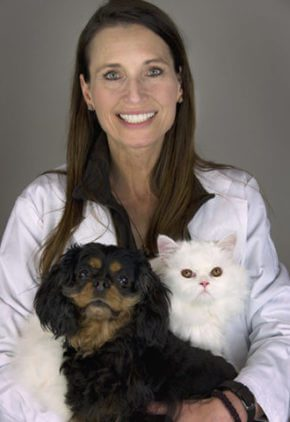 Dr. Nadine Znajda is a doctor in our dermatology service. She is skiing with a black and tan dog and a white cat.