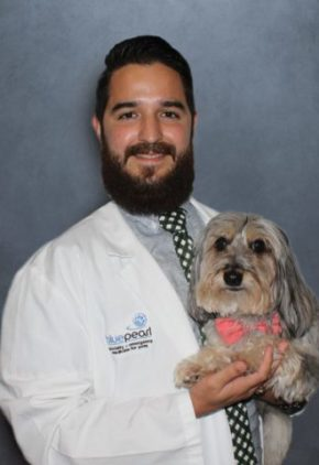 Dr. Jamie Rechy is board certified in veterinary radiology. He is holding a small dog.