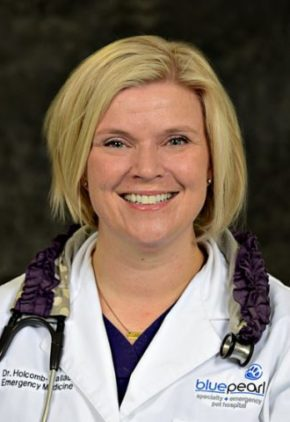 Dr. Kristen Holcomb-Wallace is a clinician in our emergency medicine service.