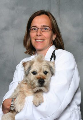 Dr. Isabelle Ducharme is board certified in veterinary neurology. She is holding a small white dog.
