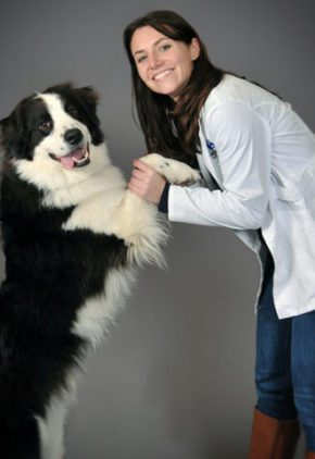 Dr. Lauren Cunningham is board certified in veterinary internal medicine. She is holding the paws of a large black and white dog us is standing up next to her.