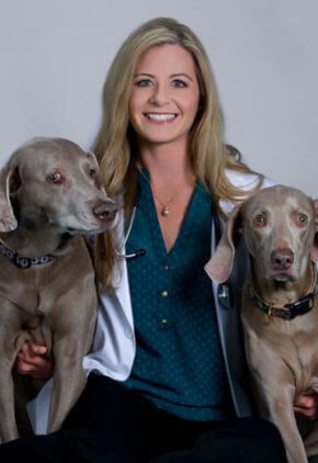 Dr. Mirae Wood is board certified in small animal surgery. She is sitting with two Weimaraners.