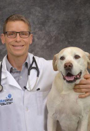 Dr. Cory Stamper is a clinician in our emergency medicine service. He is sitting next to a yellow lab.
