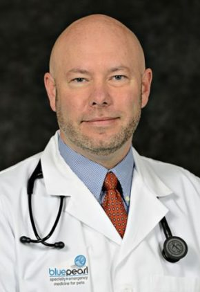 Dr. Todd Odle is a clinician in our emergency medicine service.