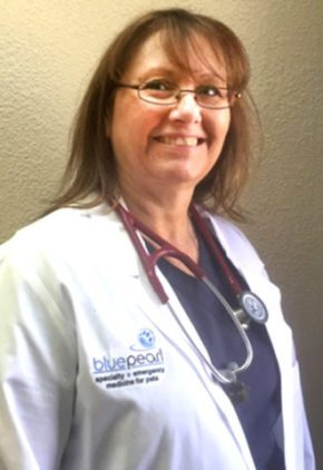 Dr. Cheryl Agent is an emergency medicine veterinarian.