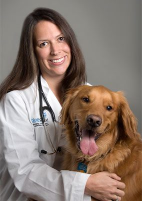 Dr. Jen Coyle is board certified in veterinary oncology. She is sitting with a golden retriever.