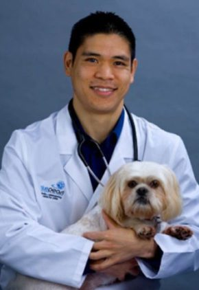 Dr. Kevin Au is board certified in small animal surgery. He is holding a small white dog on his lap.