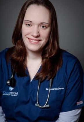 Dr. Amanda LaPorte is an emergency medicine veterinarian.